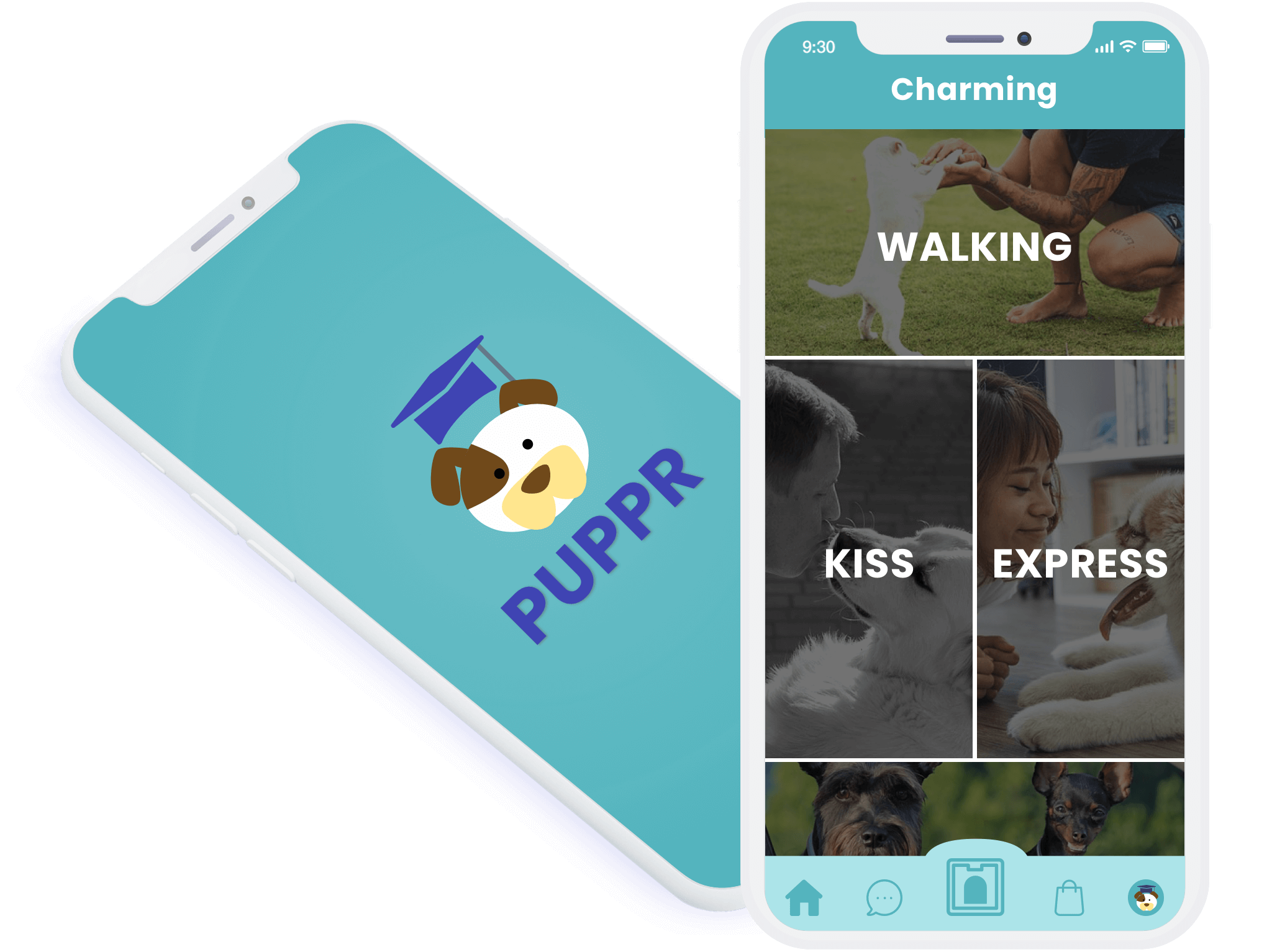 How much does it cost to create dog training app like Puppr