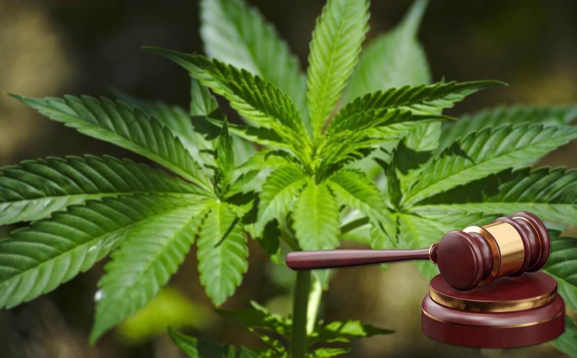 Implications of Medical & Recreational Marijuana Legalization on Tech Sector